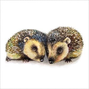 MM12 Two Hedgehogs-0