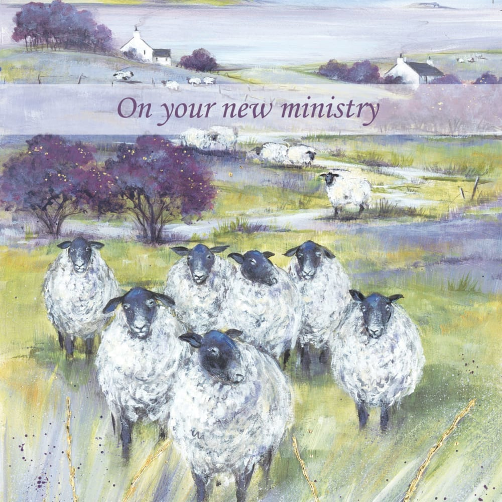Sheep Moor Yorkshire Country Diane Demirci Ministry Christian