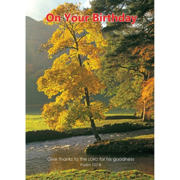 Forest Glade Trees Stream Country VKGuy Birthday Christian
